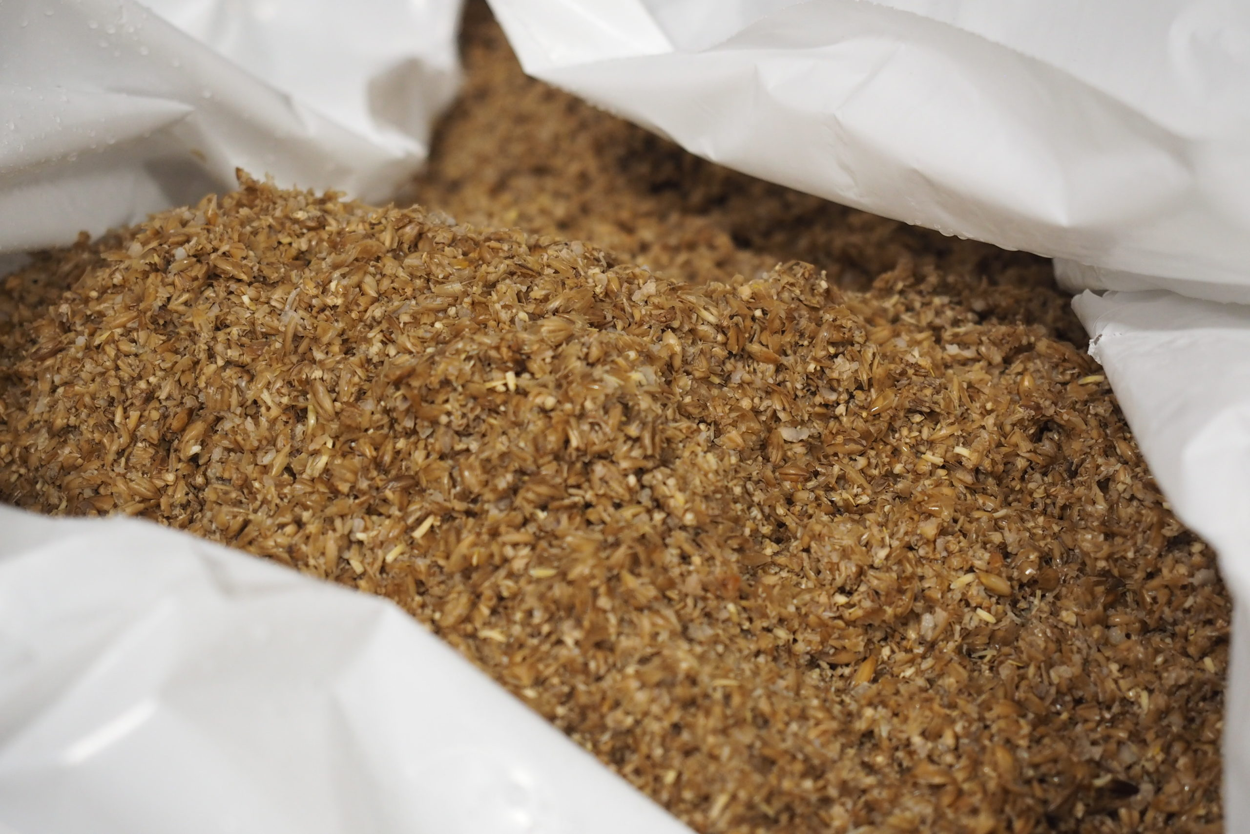 Can you replace malt barley grain flour with spent grains?